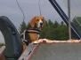 Neuer Windenfahrer